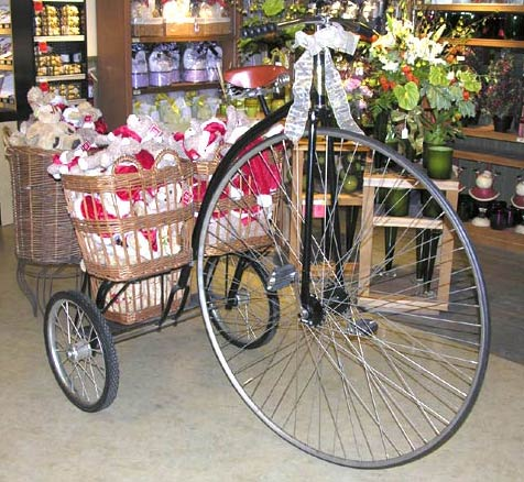 Deluxe Shelf Trike for Vons